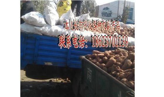 供应大量供应高淀粉红薯