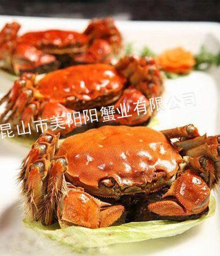 供应阳澄湖大闸蟹公螃蟹4.0-4.3两原产地直销特价供应