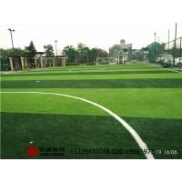 专业标准足球场施工建设及足球场围网灯光建设
