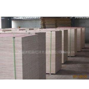 供应模板建筑模板杨木模板