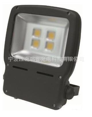 供应【厂家直销】新款160WLED泛光灯投光灯COB大功率集成光源