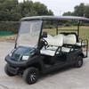 6座电动高尔夫车丨高尔夫电动丨电动高尔夫车丨电动高尔夫球车丨纯电动高尔夫丨高尔夫电动观光车丨高尔夫电动车