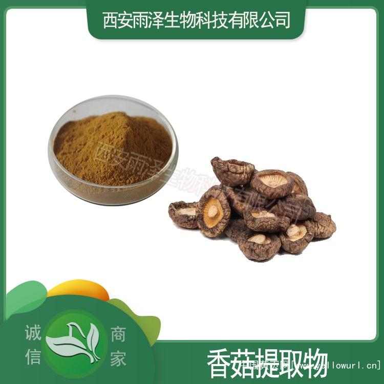 香菇提取物生产厂家